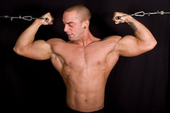Bodybuilder training. In the gym Royalty Free Stock Image