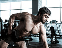 Bodybuilder training back with dumbbell in the gym stock photo