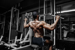 Bodybuilder training back on simulator in the gym Royalty Free Stock Images