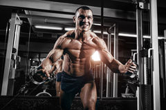 Bodybuilder training chest on simulator in the gym Royalty Free Stock Photos