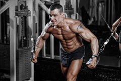 Bodybuilder training chest on simulator in the gym Stock Photos
