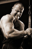 Bodybuilder training in gym Stock Photography