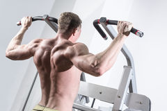 Bodybuilder training in the gym. Athlete doing royalty free stock photos