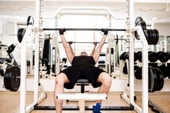 Bodybuilder training in the gym: chest - barbell bench press Royalty Free Stock Photos