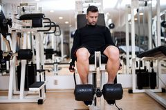Bodybuilder training in gym, leg day exercises Stock Image