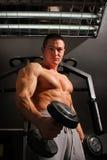Bodybuilder training hard Stock Photography