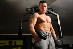 Bodybuilder training hard Royalty Free Stock Image