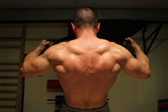 Bodybuilder training hard Royalty Free Stock Photo