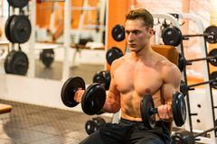 Attractive male athlete doing biceps exercise with dumbbells. Bodybuilder trains biceps with dumbels. Fitness and crossfit concept. Close-up royalty free stock photography