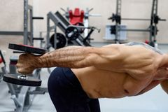 Male athlete doing deltoid exercise with dumbbells. Bodybuilder trains deltoid muscle with dumbels. Fitness and crossfit concept. Close-up Royalty Free Stock Photos
