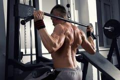 Bodybuilder trening na trenerze w gym, perfect mięśniowy męski ciało Obrazy Royalty Free