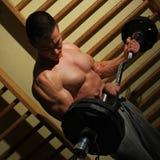 Bodybuilder trenuje mocno zdjęcie royalty free