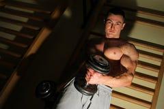 Bodybuilder trenuje mocno obrazy stock