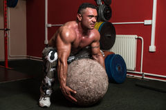 Bodybuilder Trying To Pick Up A Stone Stock Image