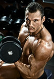 Bodybuilder. Vertical close up portrait handsome guy bodybuilder ,  execute exercise with  dumbbells, in dark gym Stock Images