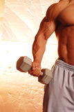Bodybuilder with weight. Buff male bodybuilder with dumbbell on metallic background Stock Photos