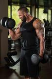 Bodybuilder ćwiczenia bicepsy Z Dumbbells Obraz Royalty Free