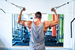 Bodybuilder working out the biceps in the gym. Sports concept Stock Photos