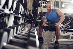 Bodybuilder working out with bumbbells weights at Royalty Free Stock Photos