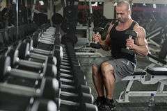 Bodybuilder working out with bumbbells weights at Stock Image