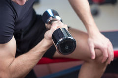 Bodybuilder working out with bumbbells weights at the gym Royalty Free Stock Images