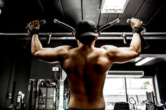 Bodybuilder working out in gym Stock Image