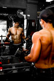 Bodybuilder working out in gym Royalty Free Stock Image