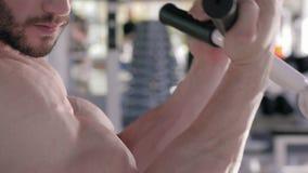 Bodybuilder workout, επαγγελματικός αθλητικός τύπος που κάνει τις ασκήσεις δύναμης στους μυς των χεριών στον προσομοιωτή κατά τη  απόθεμα βίντεο