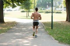 Bodybuilderagent die de Weg van het de Lentepark doornemen royalty-vrije stock afbeeldingen