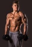 Bodybuildermann, der mit Dummköpfen aufwirft Lizenzfreie Stockfotografie