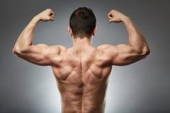 Bodybuildermodellrückseite auf Grau stockfotos