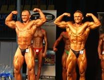 Bodybuilders Royalty Free Stock Image