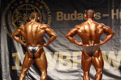 Bodybuilders Foto de Stock Royalty Free