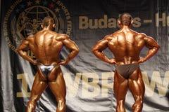 Bodybuilders Foto de archivo libre de regalías