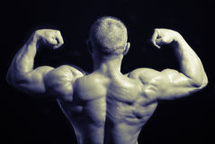 Bodybuilders back Stock Photo