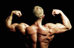 Bodybuilders back Stock Photos