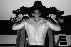 Bodybuilders back Royalty Free Stock Image