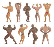 Bodybuilders characters vector illustration. Royalty Free Stock Image