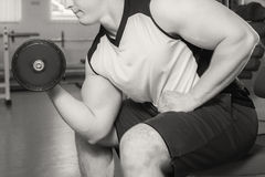 Bodybuilders engaged in the gym Stock Photos
