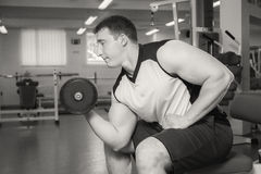 Bodybuilders engaged in the gym Stock Photo
