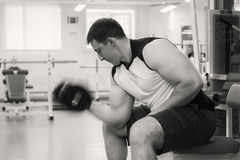 Bodybuilders engaged in the gym Stock Photography