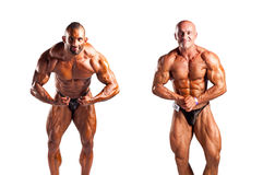 Bodybuilders Royalty Free Stock Photography