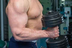 Bodybuilders at the gym Royalty Free Stock Photo