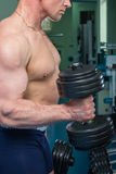 Bodybuilders at the gym Stock Photos