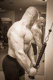 Bodybuilders at the gym Royalty Free Stock Image