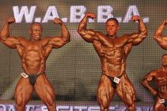 Bodybuilders posing Stock Photos