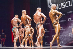 Bodybuilders show their lats spread pose in a lineup comparison Royalty Free Stock Image