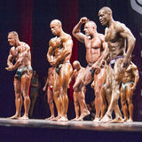 Bodybuilders show their most muscular pose in a lineup compariso Stock Image