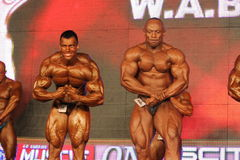 bodybuilders target140_0_ Obraz Stock