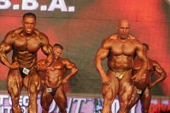 bodybuilders target216_0_ Fotografia Royalty Free